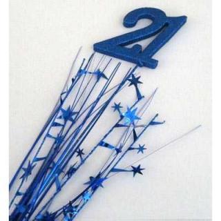 Number 21 Blue P1
