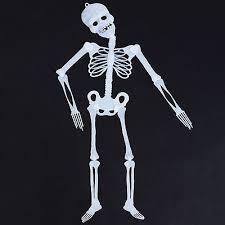 """Glow in the Dark """"3 Foot"""" Skeleton"""